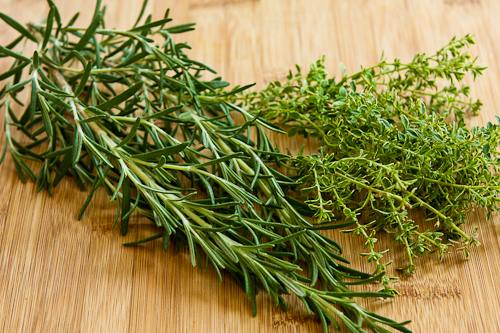 Romans-and-Their-Gift-of-Thyme