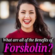 The best forskolin to buy