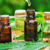 What are the Benefits of CBD?